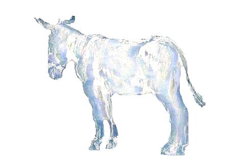image d'un âne argenté