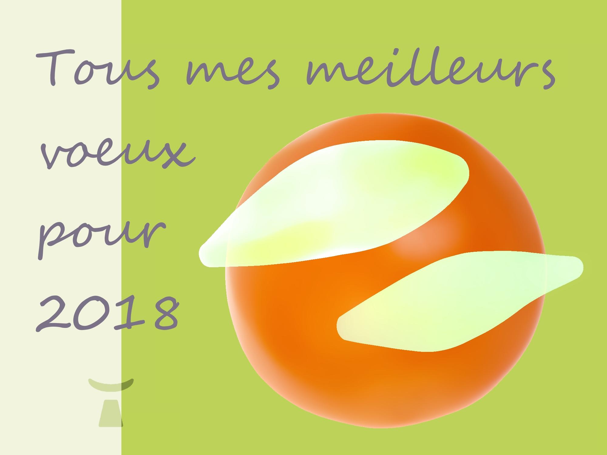 image de la carte des meilleurs vœux de Jean Toba pour 2018